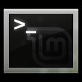 terminal-linux